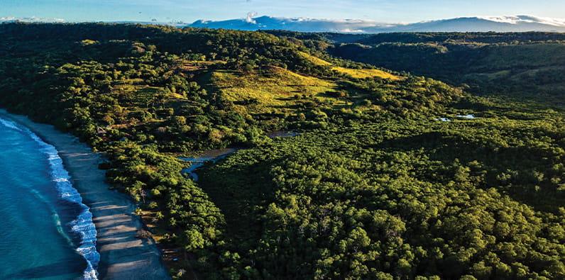 Vista aérea de un bosque en Costa Rica