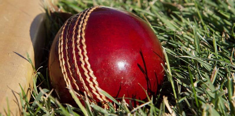 Bola kriket merah di rumput